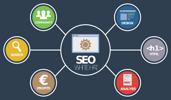 6 Tips to Become an Established SEO Expert