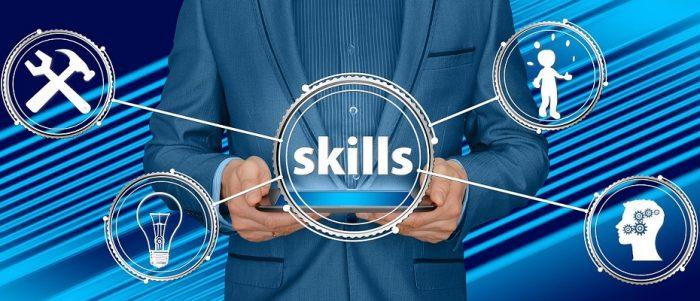 SEO Expert skills