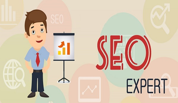 What Are the Qualities You Should Look For in an SEO Expert?