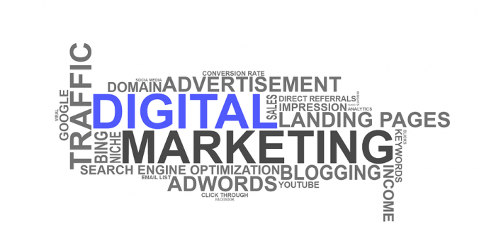 Guide to Understanding the Various Uses of SEO in Digital Marketing