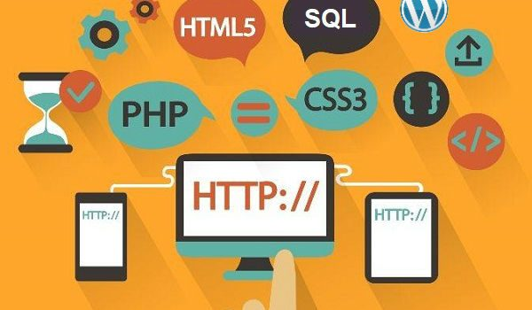 Reasons to Choose Experienced Web Developers for Building a WordPress Site