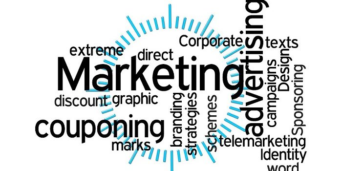 Reasons You Should Let an SEO Expert Handle Your Marketing Campaign