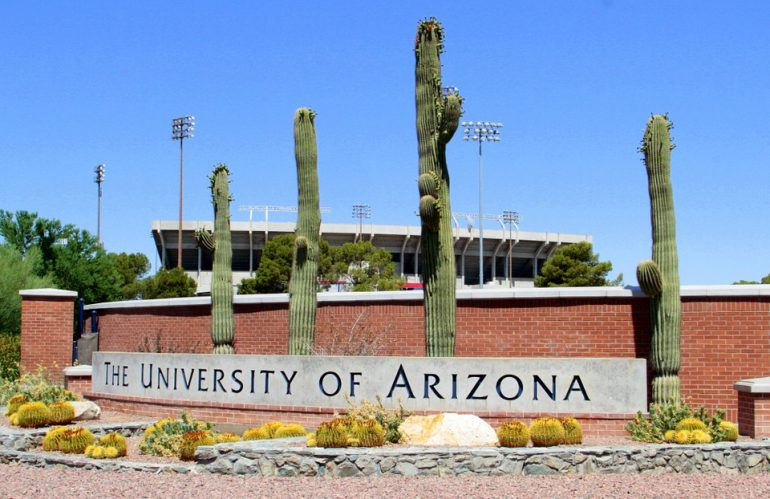 What prompted University of Arizona to change its acronym for SEO?